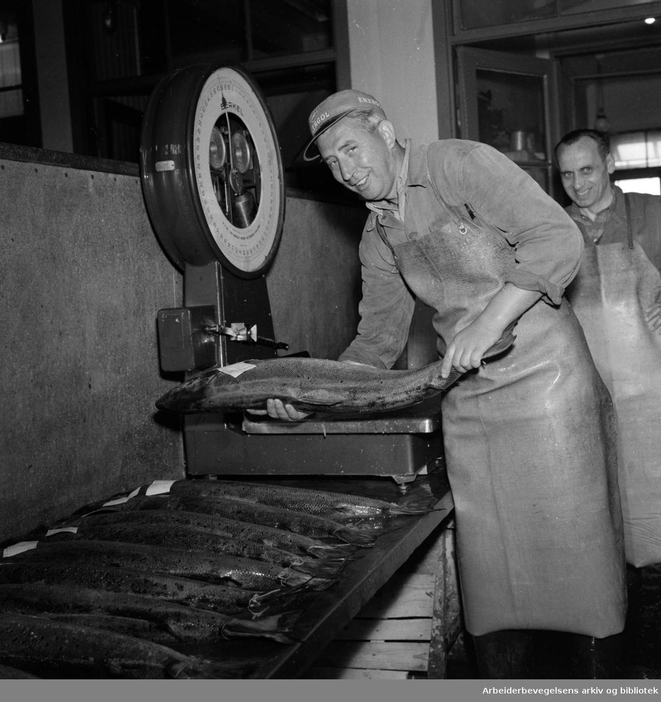 Fiskehallen. Januar 1959