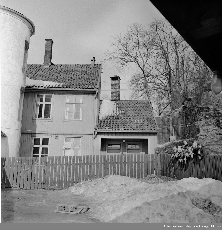 Damstredet: Mars 1958