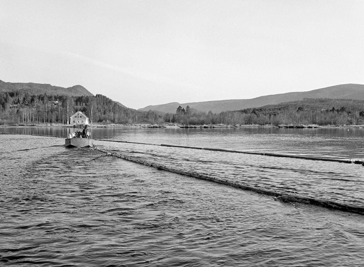 Kopling av lensestokker til reservoarlense eller ringbom ved nordenden av Storsjøen i Rendalen i 1984.  Lensestokkene ble kjedet sammen, ende mot ende, ved hjelp av lensekjettinger som ble trukket gjennom hull («øyer») i stokkendene.  På denne måten lagde fløterne et flytende stengsel for løstømmer. Arbeidet ble utført fra en varpebåt – et åpent stålfartøy med innvendig dieselmotor og vinsj.  Denne båten ble brukt ved lensearbeid og sleping av ringbommer i nordenden av Storsjøen, samt ved «landrensk» langs strendene.  De 36 kilometer lange slepene fra Åsheim i nord til Løsset i sør ble utført med den kraftigere slepebåten «M/S Storsjø».  Fløterne i varpebåten på dette bildet var Ove Øien og Per Sindre Nyberget.