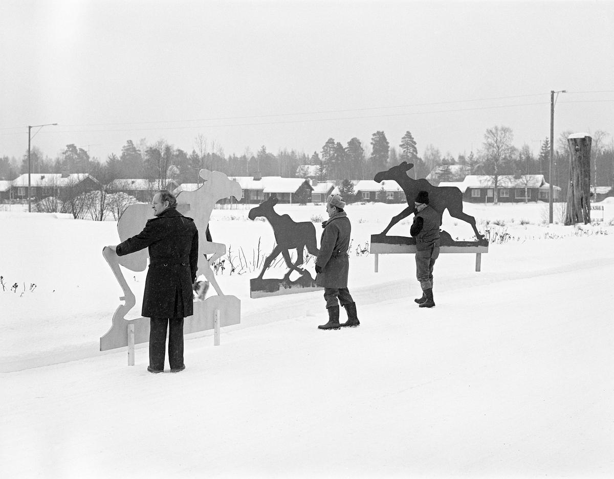Undervisnings- og utstillingsleder Jostein K. Nysæther (1921-2007), museumsdirektør Tore Fossum (1927-2017) og spesialarbeider Konrad Eggen (1917-1992), fotografert ved innkjørselen til daværende Norsk Skogbruksmuseum vinteren 1978.  De tre mennene holdt elgsilhuetter av finér.  Bakgrunnen for dette opptrinnet var at gode venner av museet (se fanen «Opplysninger») hadde antydet muligheten for en kunstgave, ei elggruppe i naturlig størrelse utført av skulptøren Skule Waksvik (1927-2018).  Silhuettene ble brukt til å teste mulige plasseringer i den parkmessige sonen mellom museumsbygningen og Solørvegen (Riksveg 2).  I bakgrunnen ser vi villabebyggelsen langs den nedre delen av Grøndalsbakken.