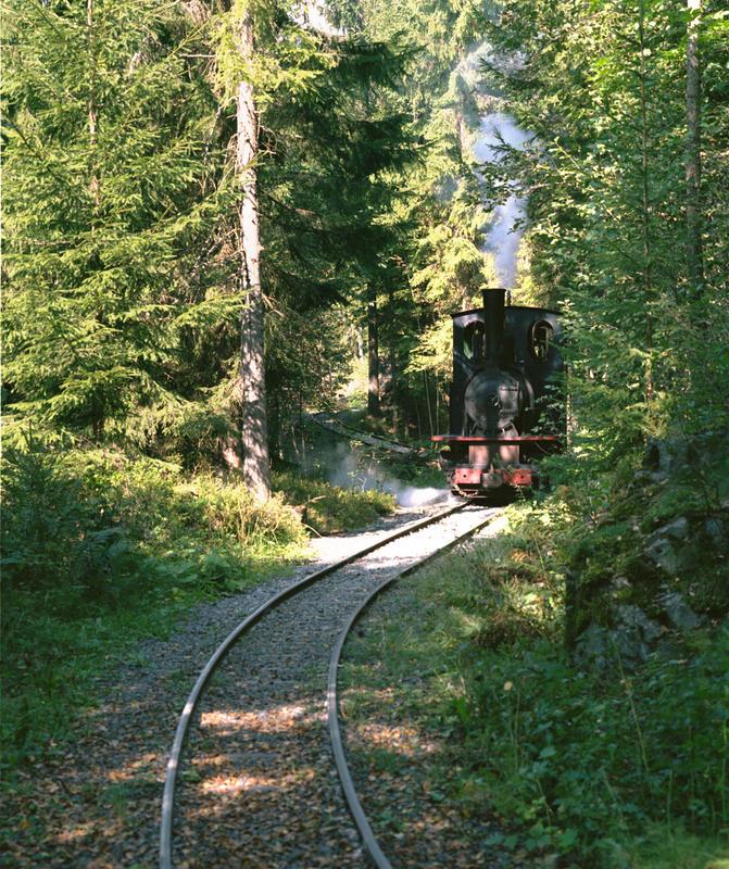 Lommedalsbanen_tog_i_skogen.jpg
