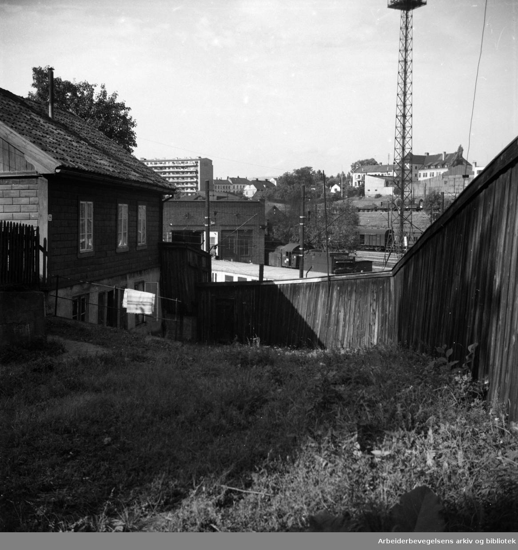 Birkebeinergata. September 1949