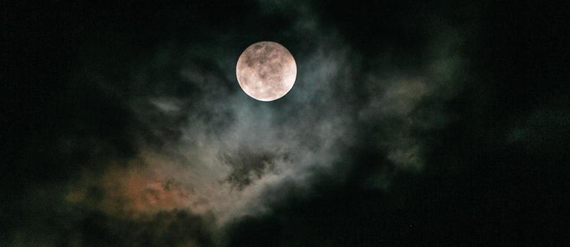 Natt på museene (Foto/Photo)