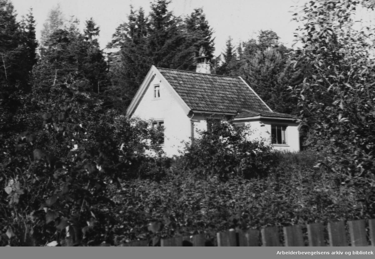 Bekkelagshøgda Hageby. September 1945