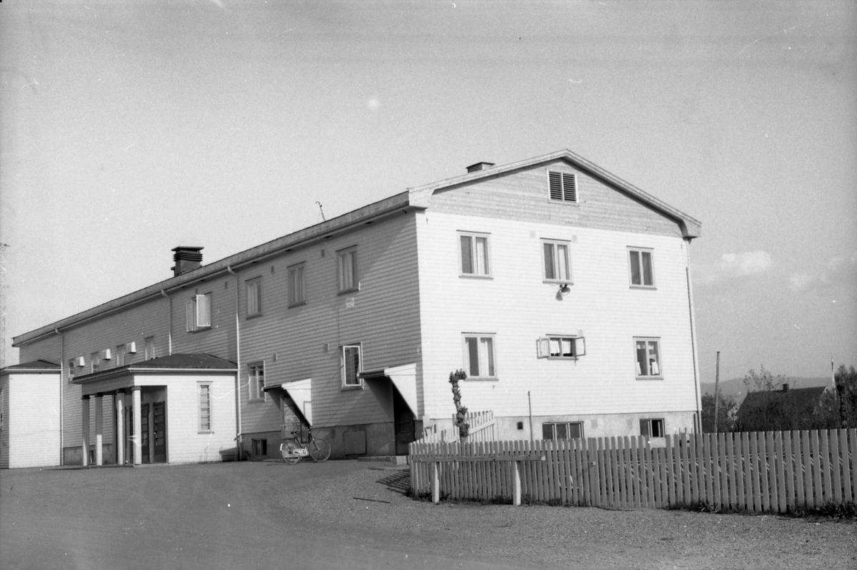 Fire bilder av Lena Bad mai 1954.