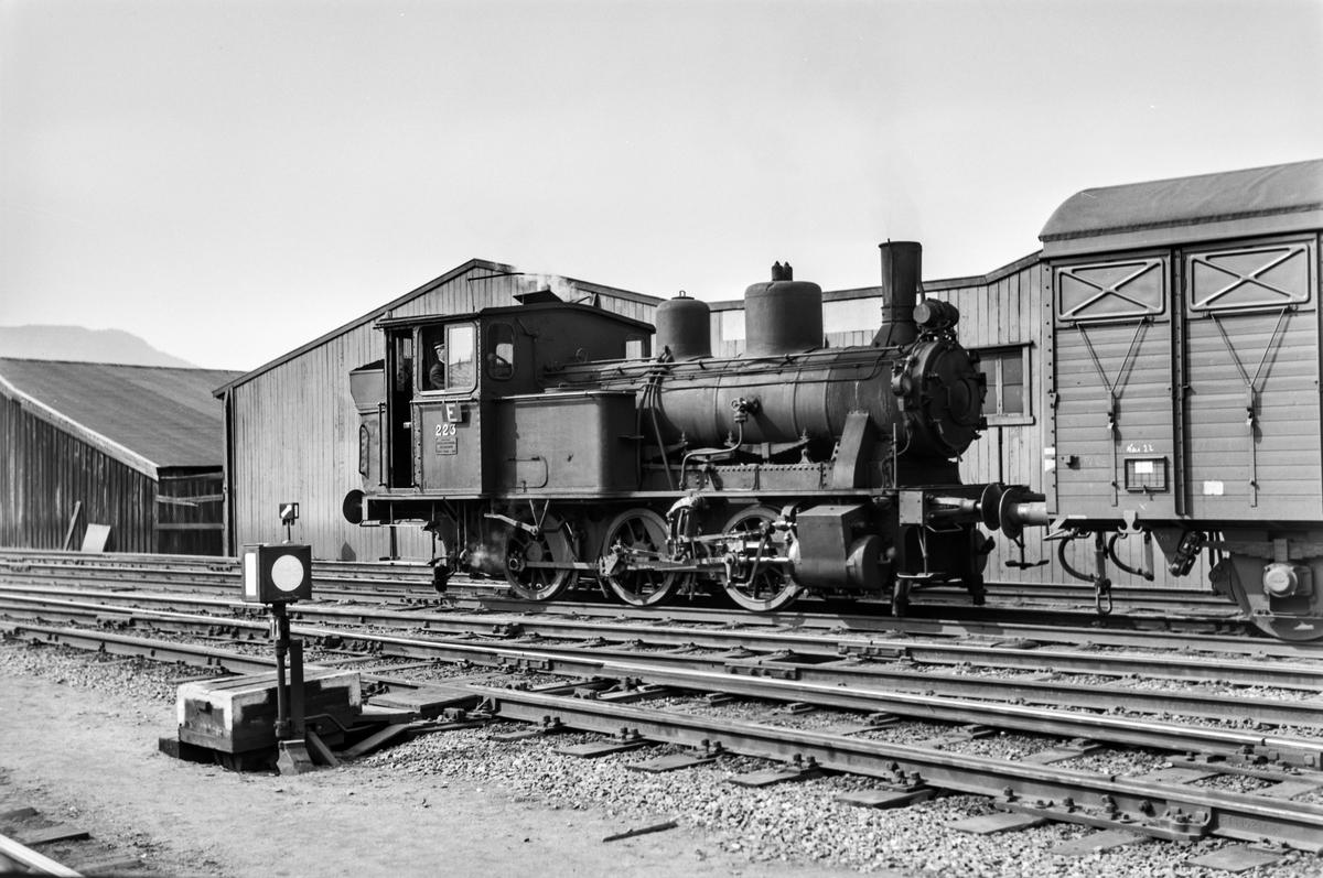 Damplokomotiv type 25a nr. 223 i skiftetjeneste på Trondheim stasjon.