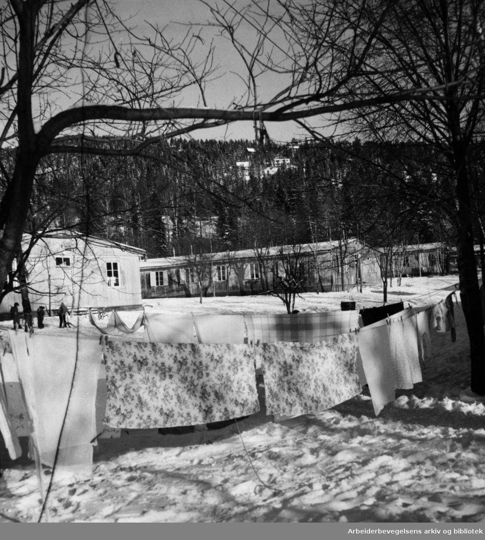 Bogstadleiren. Tysk brakkeleir. Heimstadjordet. Januar 1955