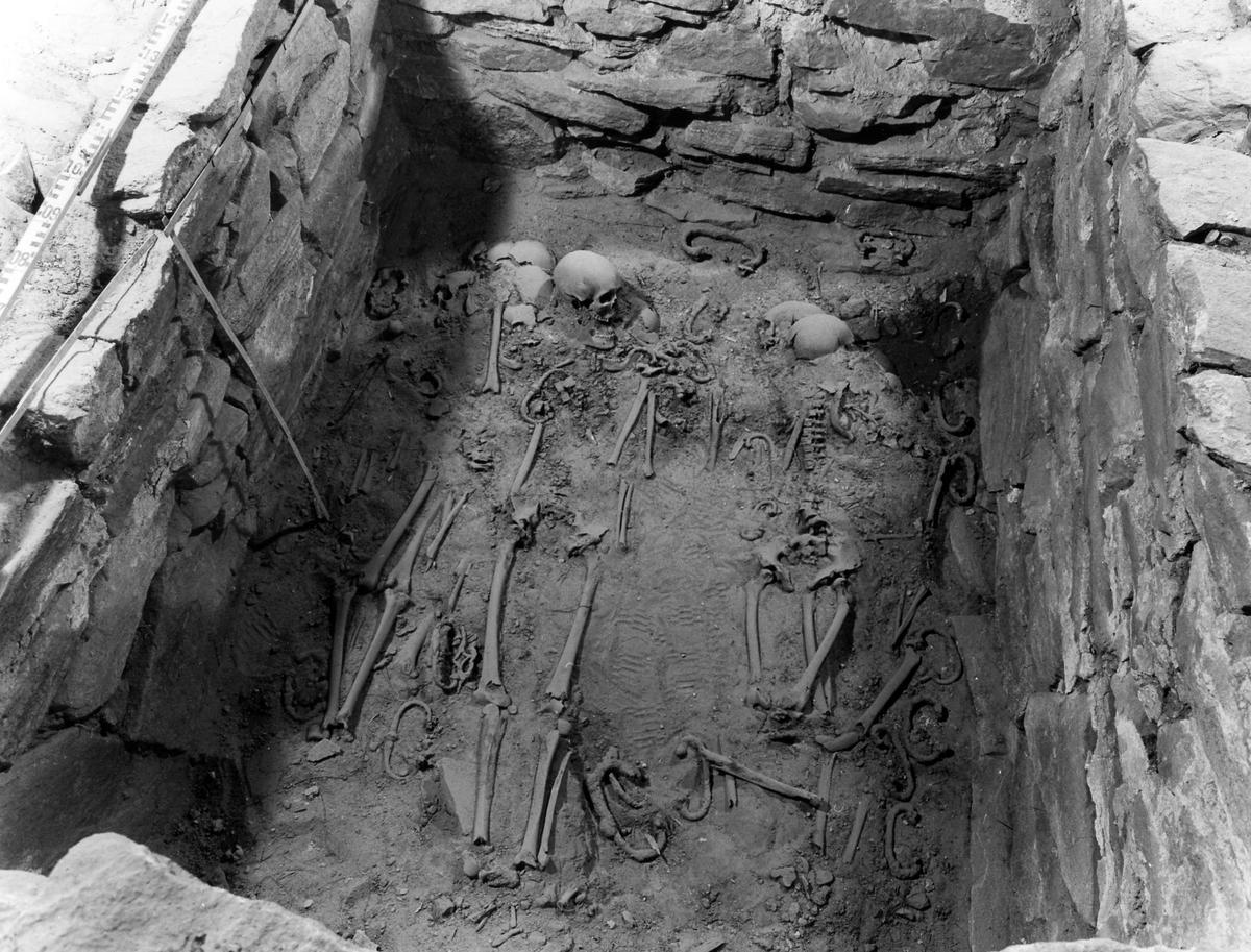 Utgrävning av gravar i stadskyrkan i samband med renoveringen 1984-1985. Längs mittgången fanns en rad kallmurade stenkammargravar, använda fram till 1700-talets mitt.