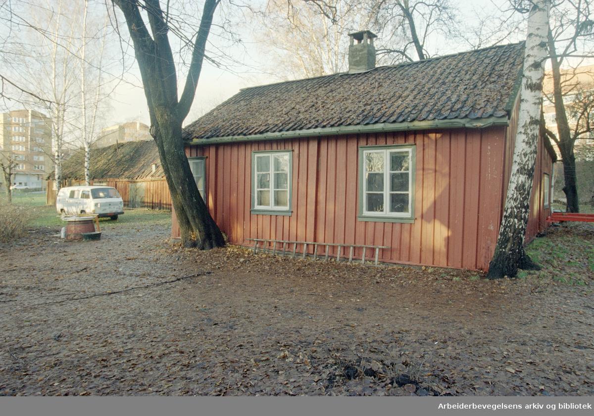 """Christian Michelsens gate. Restene av løkken Vennelyst, en lav rød stue som har """"Anno1781"""" over døra. 5. desember 1996"""