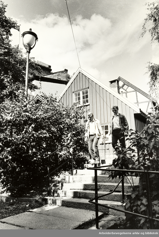 Damstredet. Bergfjerdingen. Juni 1989