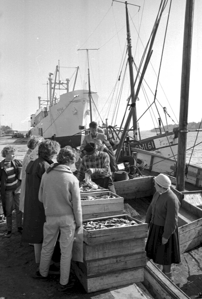 Ålandsresa. Fiskförsäljning i hamnen. M/S Boge. Fiskebåt, Suomi 61