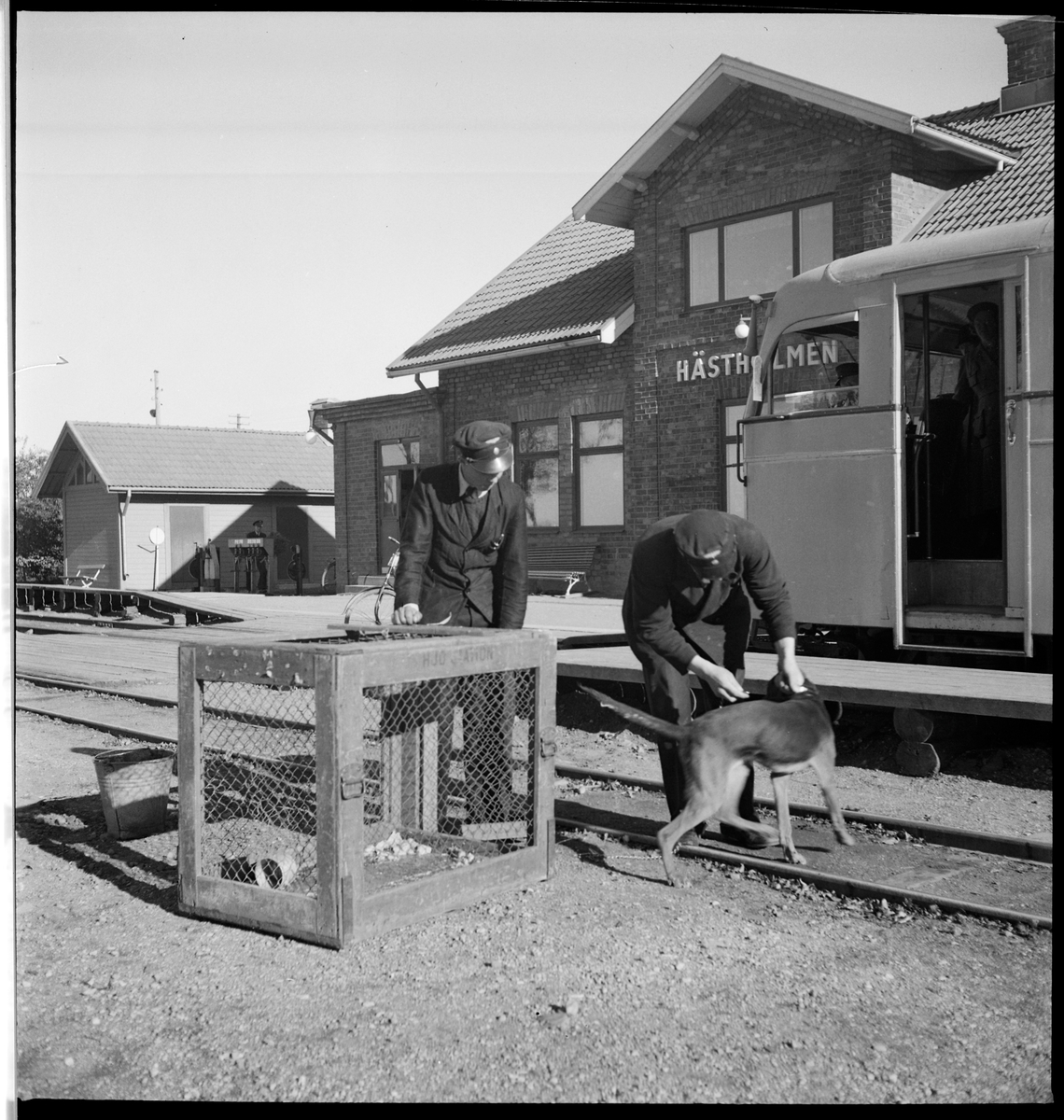 Personal med hund och bur vid Hästholmen station. Rälsbuss tillhörande Statens Järnvägar, SJ Ydo1 422.