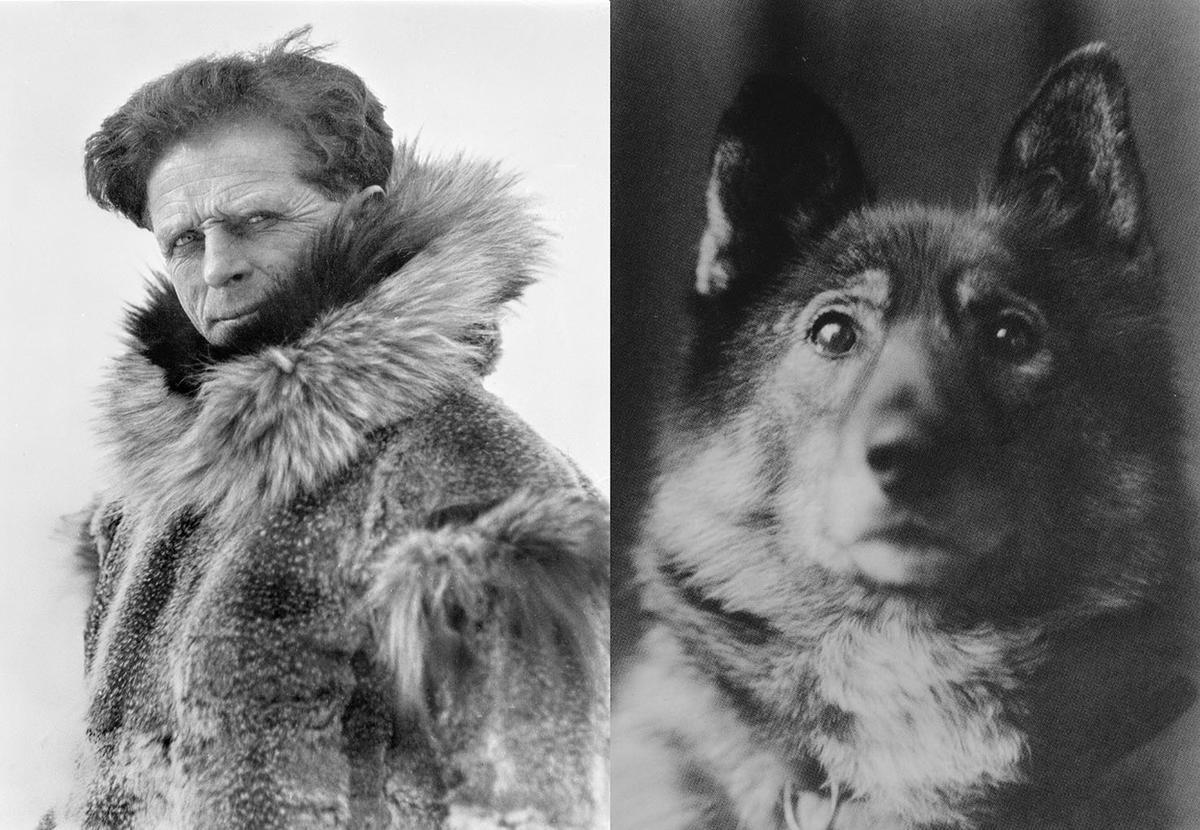 Leonhard Seppala (1877–1967) og hans hund Togo (1916–1929).