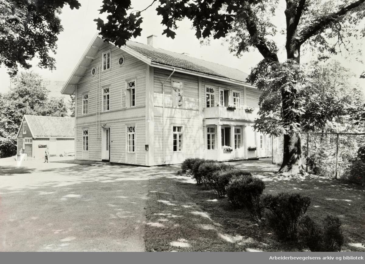Grønnegata 19. Lassonløkken. Juli 1981