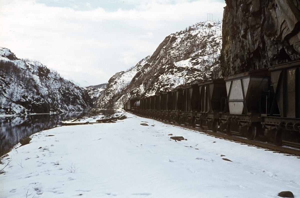 Godstog med tomme kisvogner på Sulitjelmabanen underveis fra Finneid til Lomi