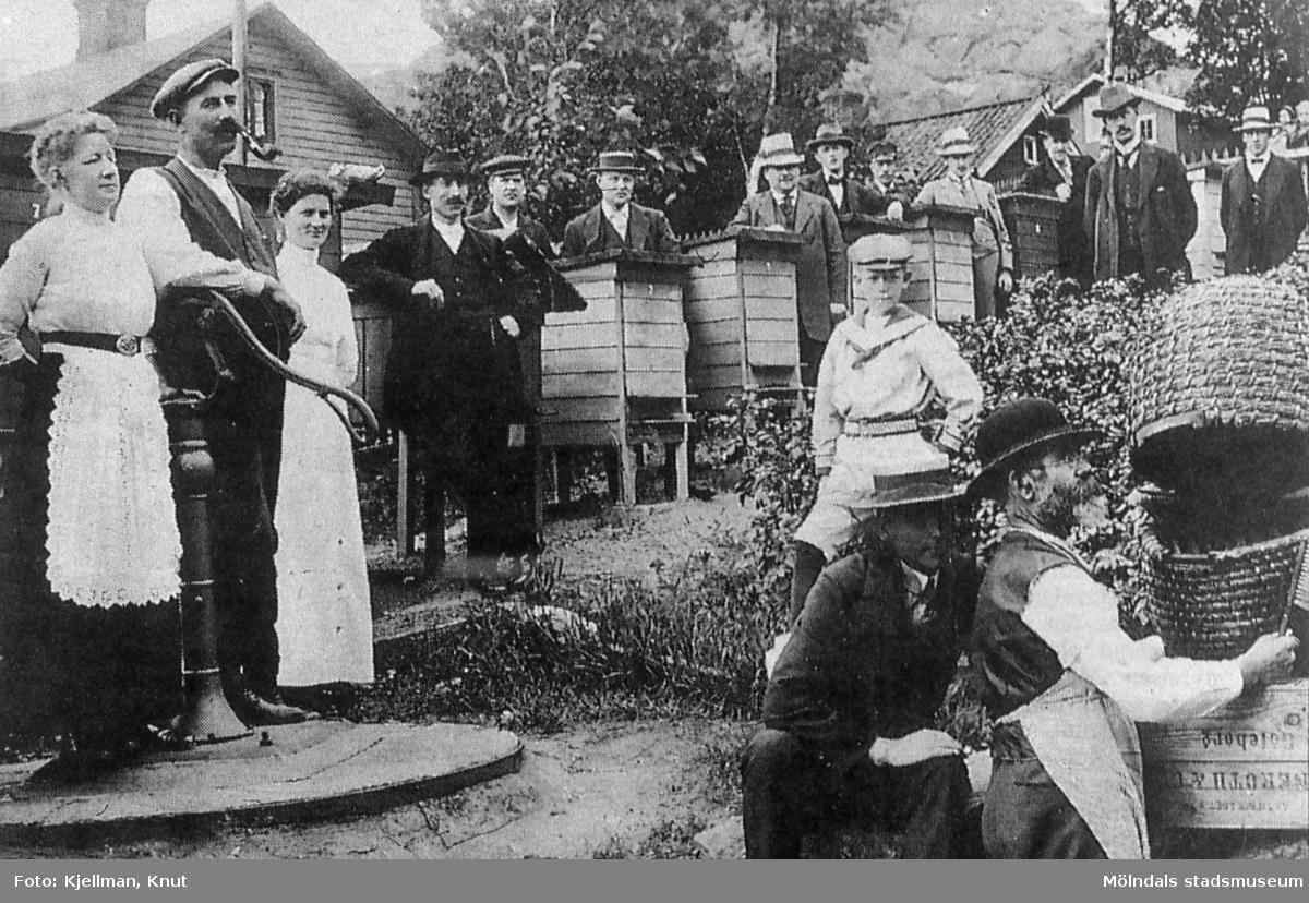 Mölndals biodlarförenings första instruktionskurs. Fotografi taget vid Gunnebogatan i Lackarebäck, östra Mölndal, år 1914. Till vänster, på brunnskaret, ses Eric Hedenberg tillsammans med sin fru. Det är i deras trädgård föreningens medlemmar är samlade. AF 9:27.