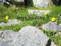 """Microsoft PowerPoint presentasjon som presenterer """"Jæren Sma"""