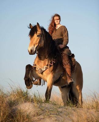 Vikinghestene_Emma.jpg