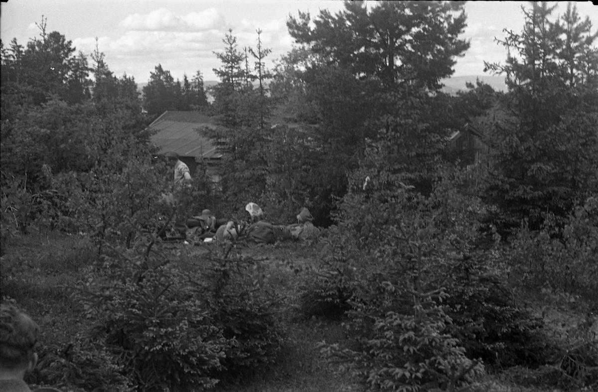 Avfotografert bilde av soldater som tar livet med ro i skogsterreng. Stedet er ikke identifisert.