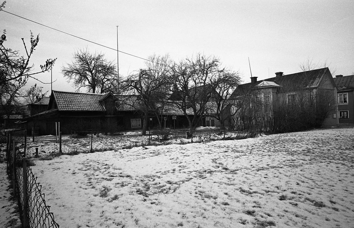 Fastigheter i kvarteret Tullnären mellan Storgatan - Trädgårdsgatan och Herrgårdsgatan - Paradisgränd. Snö i trädgården. Fotografens anteckning: Dokumentation av fastigheter i kvarteren söder och norr om ån. Bilder och beskrivning finns på Arboga museum.
