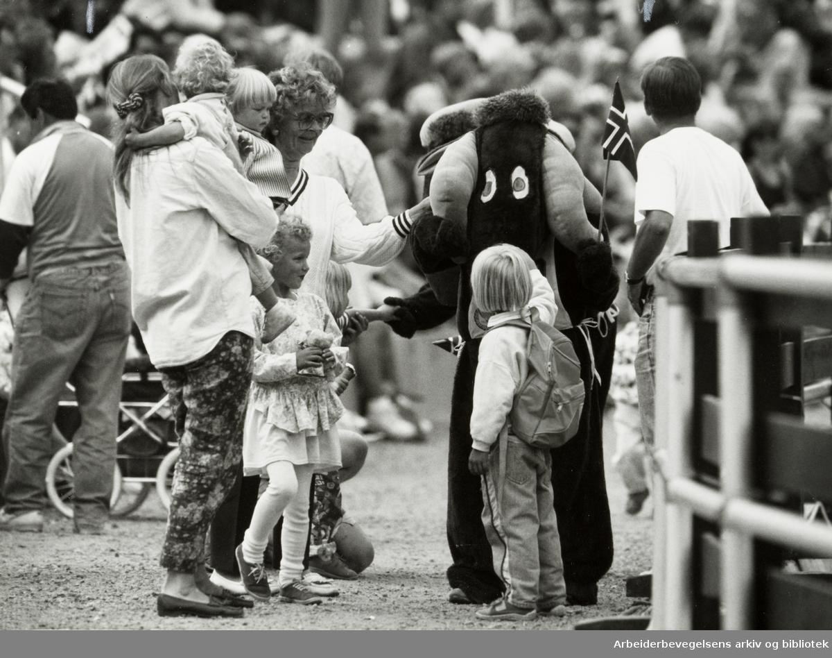 """Holmenkollen. Sommerkollen. De brune """"Holmenkoll-elgene"""" falt i smak for de yngste. 14. juni 1992"""