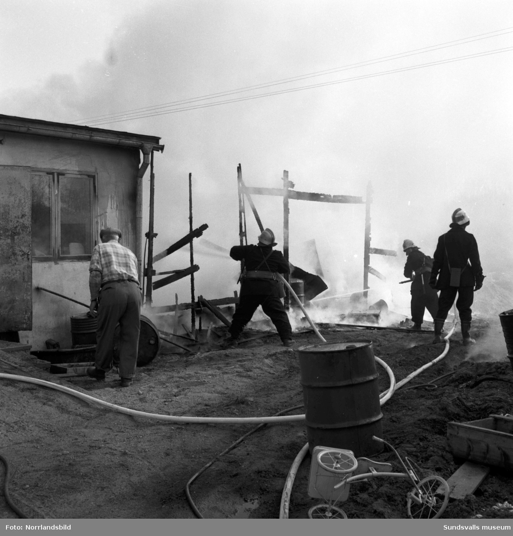 Uthusbrand vid handelsträdgården i Bergsåker som låg mellan Selångersån och Bergsåkerstjärnen.
