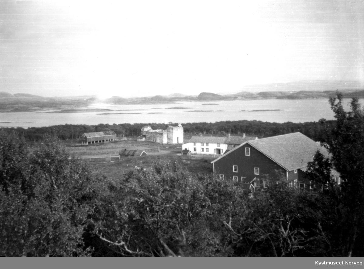Nærøy, oversiktsbilde over gården på Nærøya