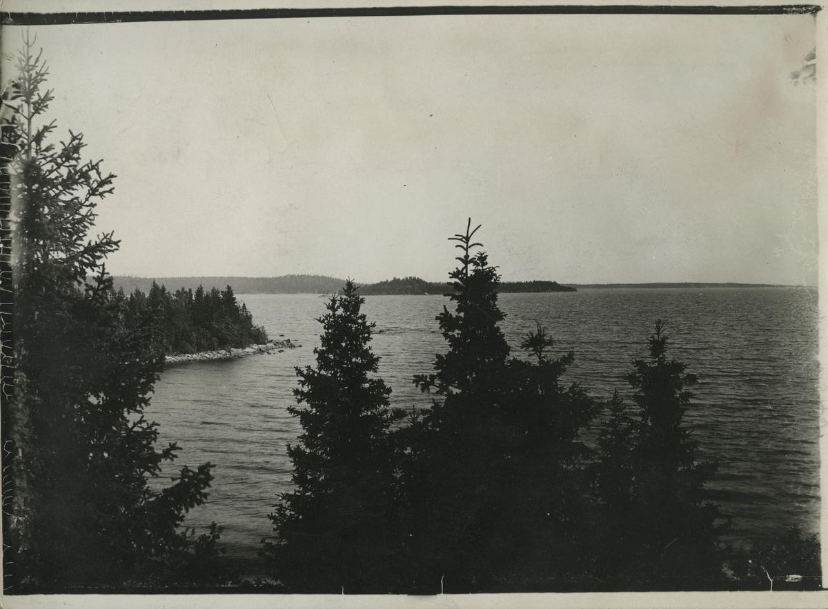 Hudiksvalls skärdgård, Lingarö.