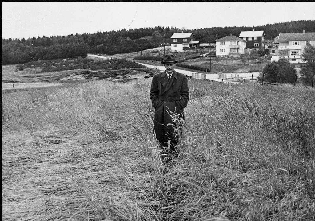 Oppfinnar Sigmund Stokland ser på resultatet av eit prøvesåingsfelt.