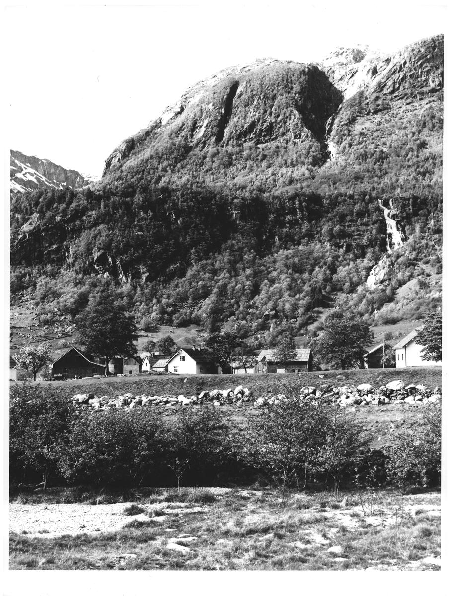 Flatebø. Veis ende innerst i Maurangerfjorden