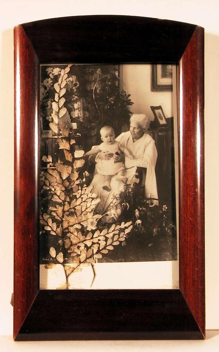Fotografi fra stue med flere store blomsterdekorasjoner i midten en gammel dame sittende i hvit kjole i en armstol  med et lite barn på fanget; 80årsdagen. Lagt inn mellom fotografi og glass er en presset plantekvist.