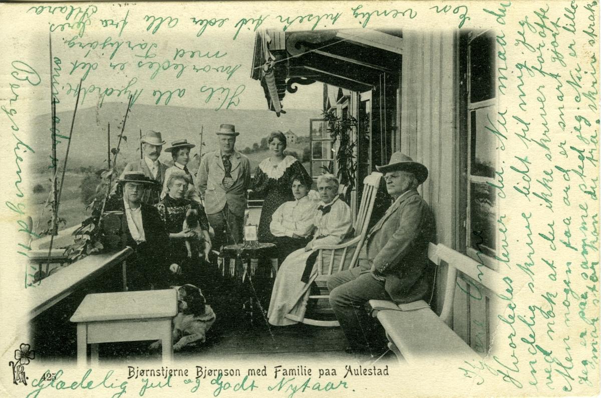 Familie, Bjørnson, gruppe, veranda, Aulestad, brevkort,