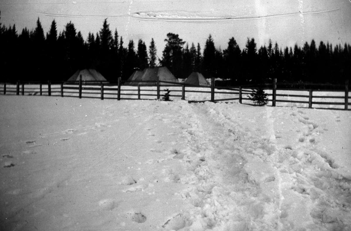 Militær vinterøvelse. Leir med telt