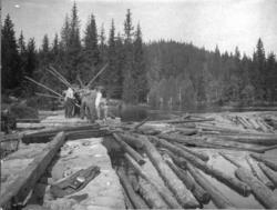 Flødning fra Fidlingen. Tømmeret sidder i Dammen.