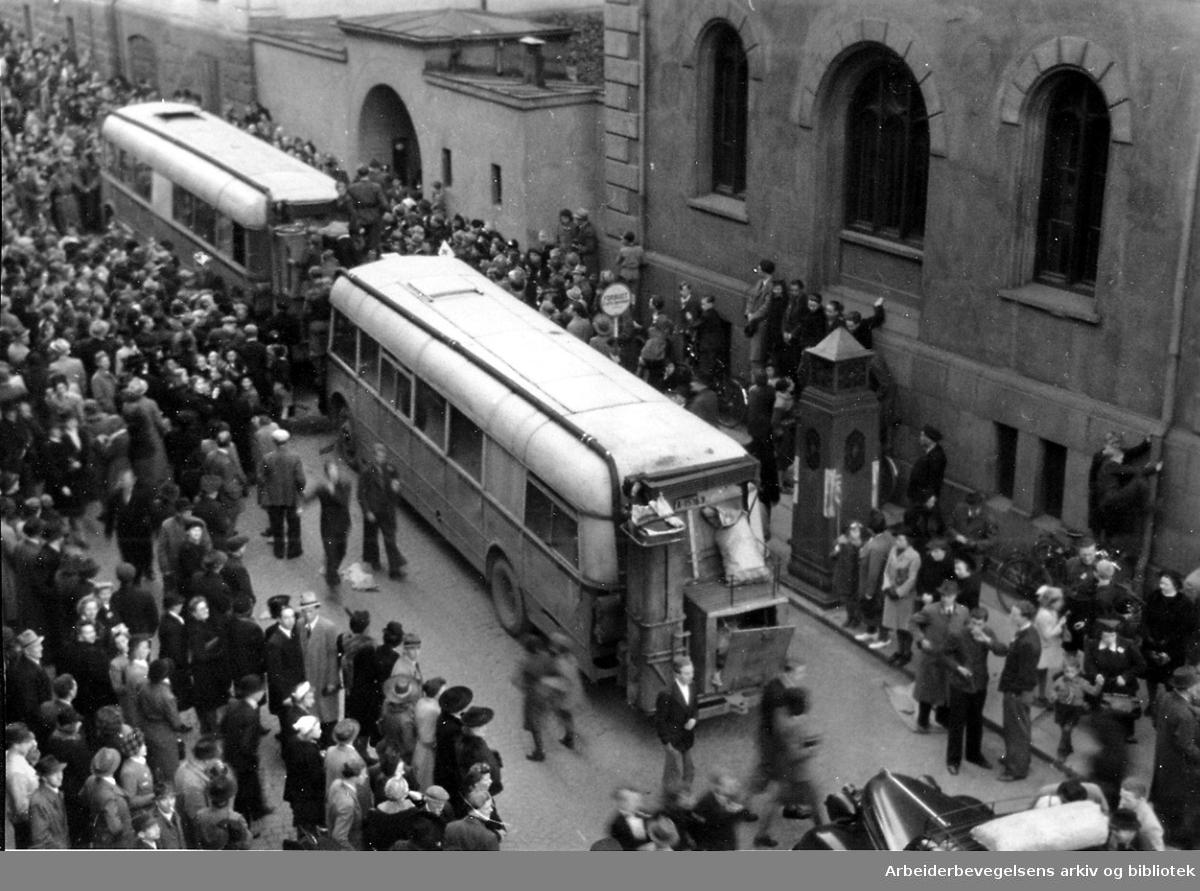 Krigen i Norge 1940 - 1945.Fangene på Møllergata 19 skal fraktes i Sporveiens busser til Grini for registrering og frigivelse..8. mai 1945