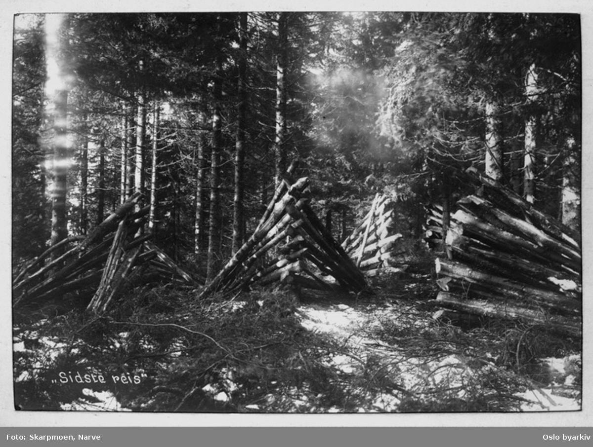 Skogsvirke, tynningsvirke - lagt i reis for tørking