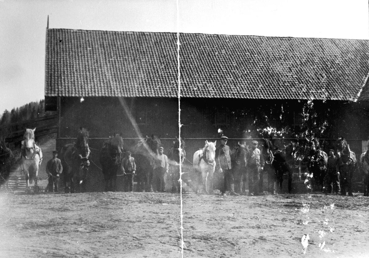 Hester og arbeidere oppstilt for stallåven på Skredshoel, Ringsaker.