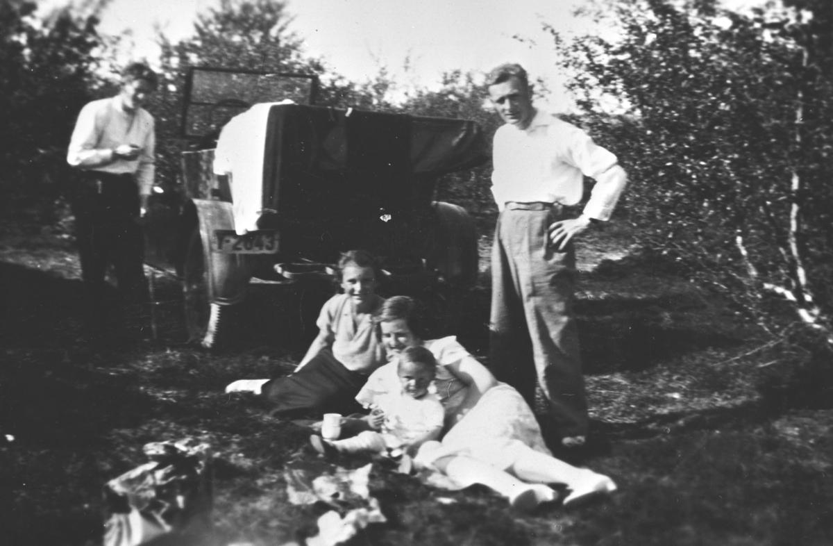 Familie på piknik.