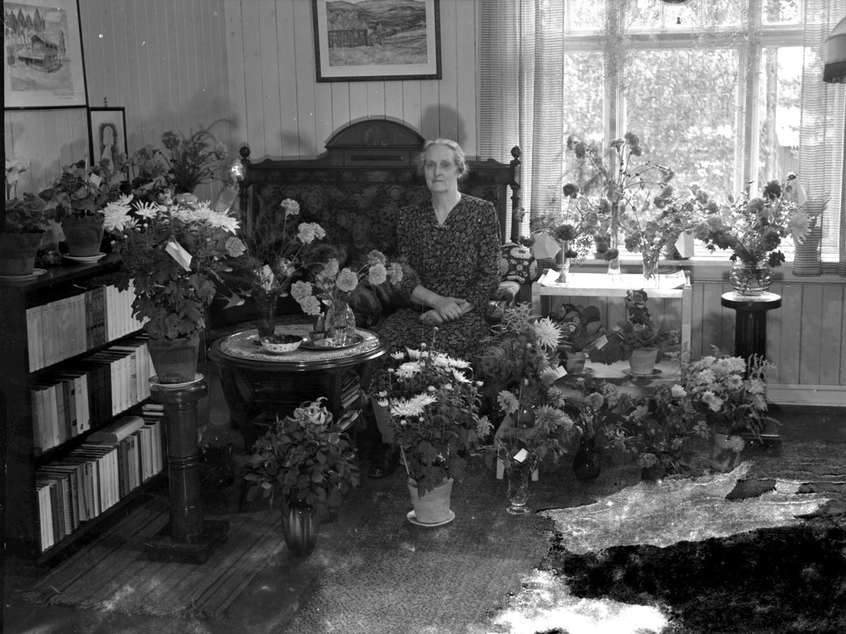 Eldre kvinne i stua