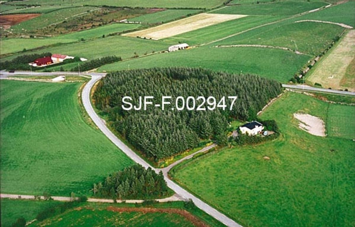"""Flyfotografi som viser Salteskogen i Klepp i Rogaland.  Vi ser et flatt jordbruslandskap der de grønne flatene brytes av veger, gardstun og - sentralt i dette fotografiet - en """"avrundet triangulær"""" skogteig - et produkt av skogreisngsarbeidet på Jæren.  Salteskogen er en forholdsvis ensaldret granskog.  I forkant av skogen ligger en villa, som etter eksteriøret å dømme kan være bygd i 1970- eller 80-åra."""