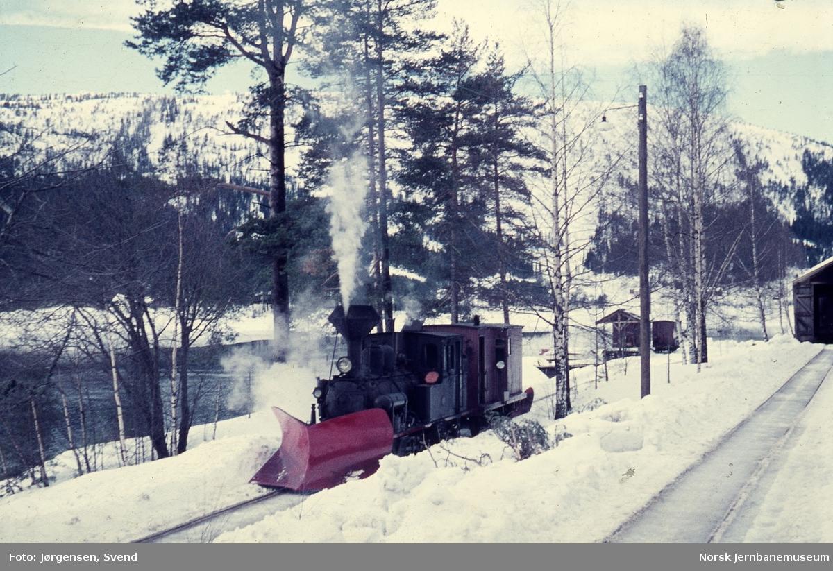 Damplokomotiv nr. 5 med sporrenser på havnesporet på Byglandsfjord stasjon