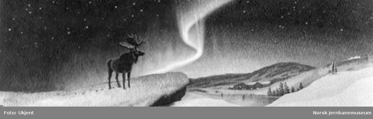 Tegning av et vinterlandskap bl.a. med elg i nordlys