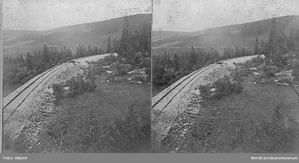 Rørosbanens trase nord for Reitan