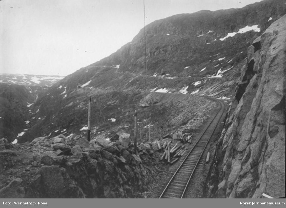 Parti fra Norddalen med brua ved Norddalsenden i bakgrunnen