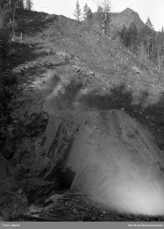 Vanntunnel for Hallandsbekken