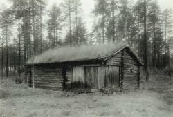 Follandsvangen, Alvdal, Nord-Østerdal, Hedmark. Seterhus mellom høye trær. Nå på Glomdalsmuseet.