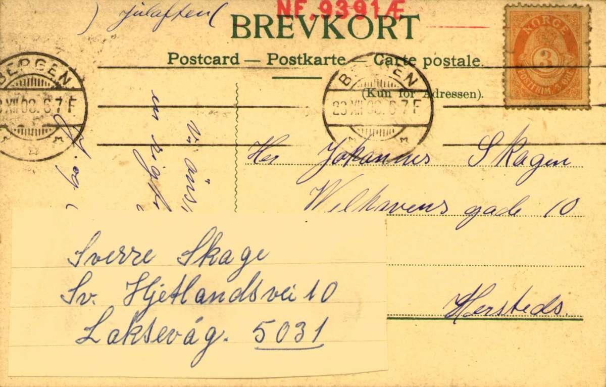 Postkort. Jule- og nyttårshilsen. Sommermotiv. Skog. Flørtende par. Stemplet 23.12.1903.