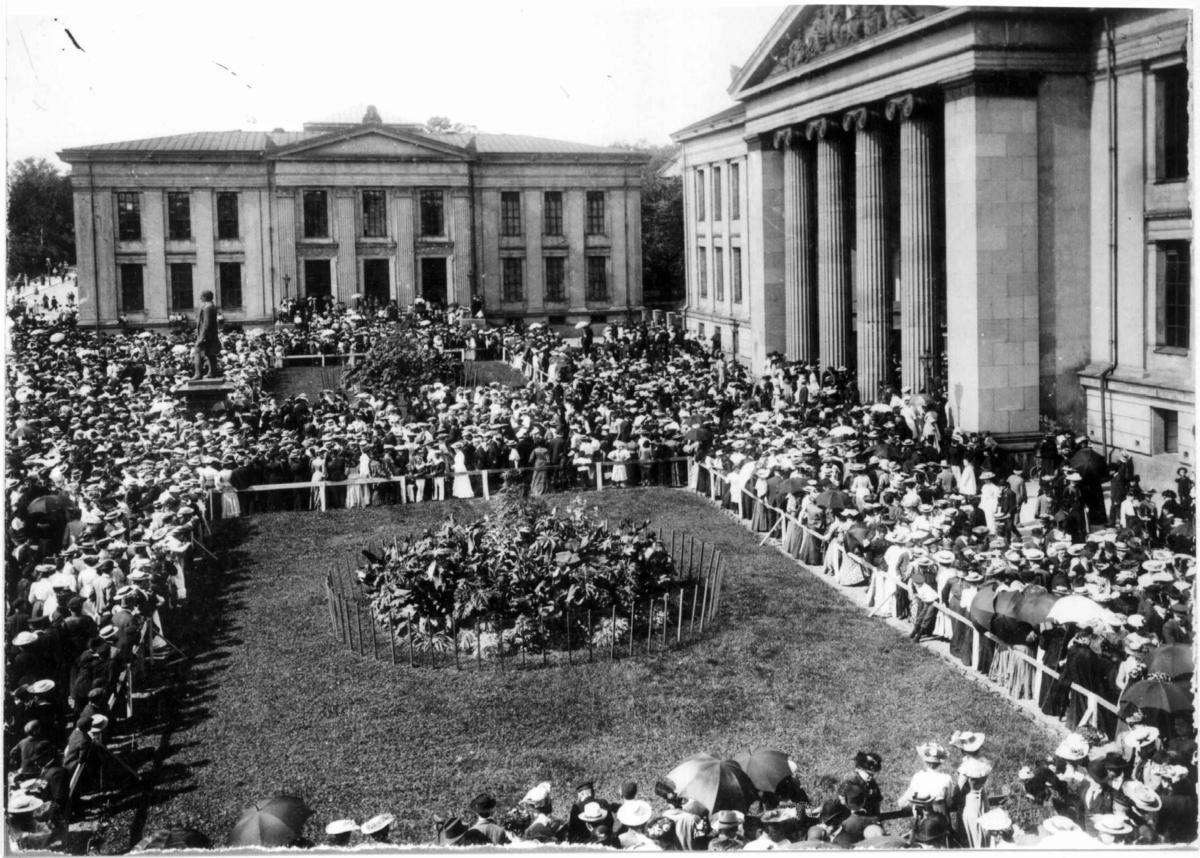 Folkeavstemning 1905