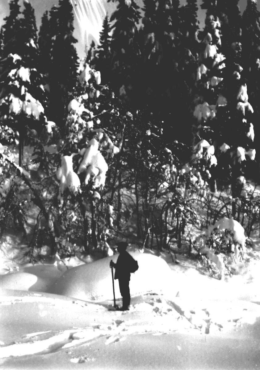 Person på skitur.