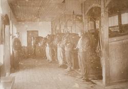 Stallen på Bastøy skolehjem, Bastøya, ca. 1903. En mannlig b